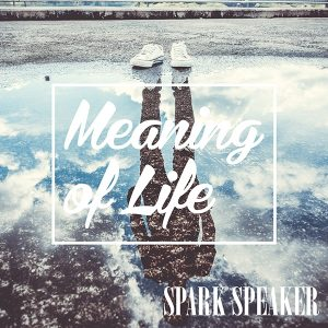 Patch_SPARK SPEAKER_Meaning of Life_20180411